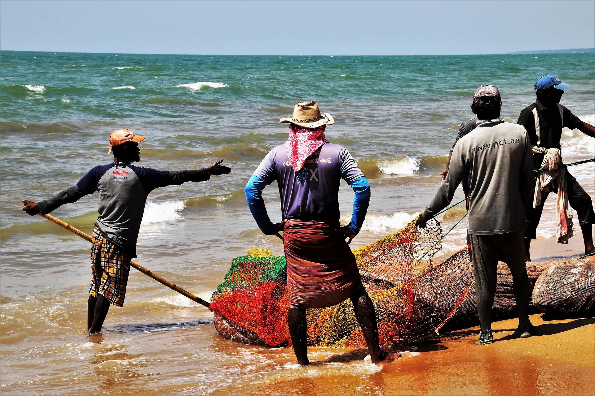 Océan Indien: les enjeux économiques sur la pêche maritime